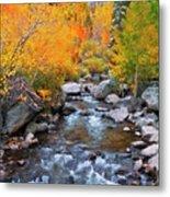 Fall Color Along Bishop Creek, Inyo Metal Print