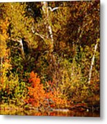 Fall Color Creekside Metal Print