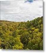 Fall Color Hills Mi 1 Metal Print