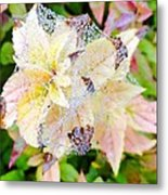 Fall Color On A Foggy Day 4 Metal Print