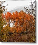 Fall Color Snow Storm Metal Print