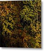 Fall Color Trees V7 Pano Metal Print