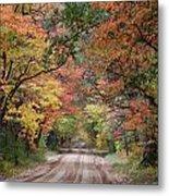 Fall Colors - 2 Metal Print