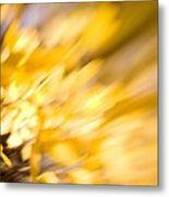 Fall Colors 6730 Metal Print
