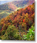 Fall Colors Along The Blueridge Metal Print