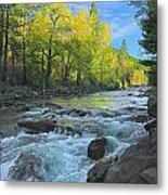 Fall Colors And The Little Salmon River Metal Print