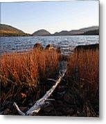 Fall Colors At Eagle Lake In Maine Metal Print
