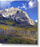 Fall Colors At Gunnison National Forest Metal Print