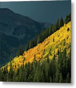 Fall Colors In Aspen Colorado Metal Print