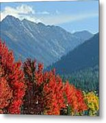 Fall Colors In Joseph Or Metal Print