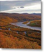 Fall Colors In The Arctic Metal Print