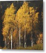 Fall Colors In Washington Cascades Metal Print