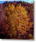 Fall Colors In Yellow Metal Print