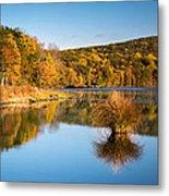 Fall Colors Metal Print