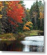 Fall Colors On A Lake Metal Print