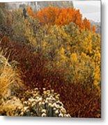 Fall Colors On June Lake Loop Metal Print