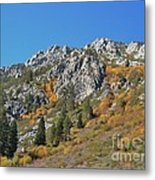 Fall Colors S Lake Tahoe California Metal Print