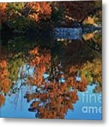 Fall Colors Water Reflection Metal Print by Robert D  Brozek