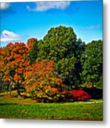 Fall Colours In Massachusetts Metal Print