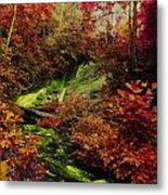 Fall Creek Fastasy Metal Print