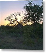 Cedar Park Texas Fall Creek Sunset Metal Print