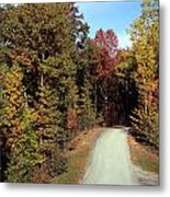 Fall Drive Thru Metal Print