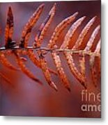Fall Fern Metal Print