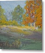 Fall Field Metal Print by Dwayne Gresham