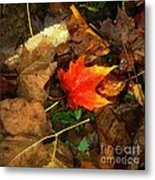 Fall Flames Out Metal Print