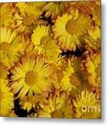 Fall Flowers Metal Print