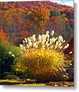 Fall Foilage In The Mountains Metal Print