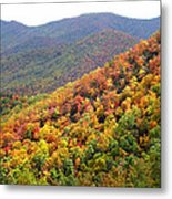 Fall Folage 2 Along The Blueridge Metal Print