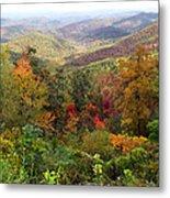 Fall Folage 3 Along The Blueridge Metal Print