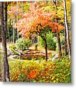 Fall Folage And Pond Metal Print