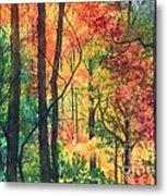 Fall Foliage Metal Print by Barbara Jewell