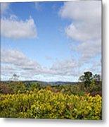 Fall Foliage Hilltop Landscape Metal Print