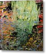 Fall Foliage Reflection 3 Metal Print