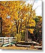 Fall Foliage Vi Metal Print