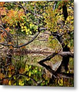 Fall From The Water Metal Print
