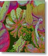 Fall Gourds Pinked Metal Print