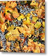 Fall Grapes Metal Print