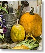Fall Harvest Metal Print