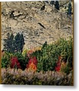 Fall In Carson Valley  Metal Print