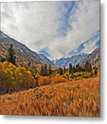 Fall In Lundy Canyon Metal Print