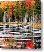 Fall In Maine Metal Print by Arie Arik Chen