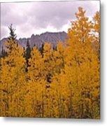 Fall In Maroon Bells Metal Print