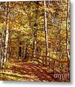 Fall In Michigan Metal Print