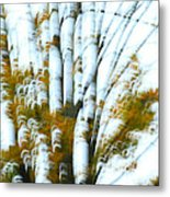Fall In Motion Metal Print