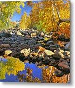 Fall In Oak Creek  Metal Print