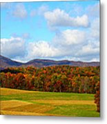 Fall In Rocky Mount Metal Print
